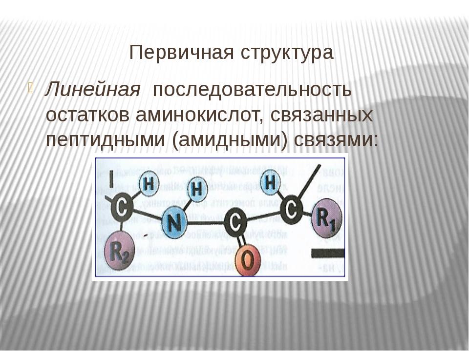 Первичная структура Линейная последовательность остатков аминокислот, связанн...