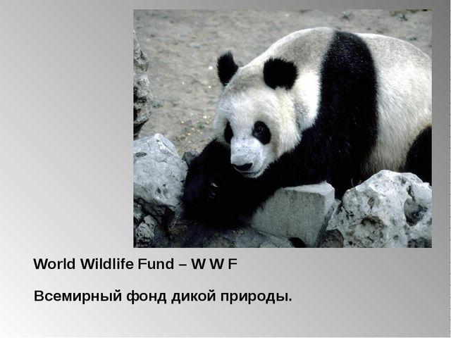 World Wildlife Fund – W W F Всемирный фонд дикой природы.