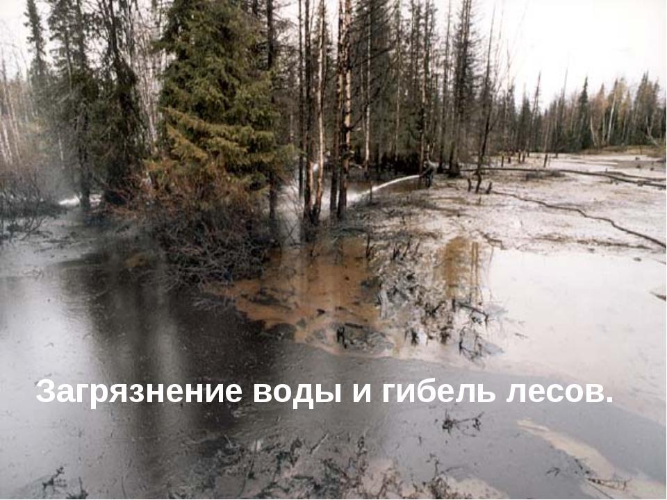 Загрязнение воды и гибель лесов.