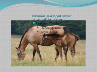 Сложный вам задам вопрос: по-английски лошадь -…….