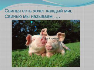Свинья есть хочет каждый миг, Свинью мы называем ….