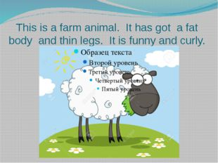 This is a farm animal. It has got a fat body and thin legs. It is funny and c