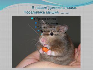 В нашем домике а house. Поселилась мышка- …….