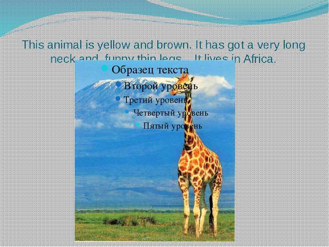 This animal is yellow and brown. It has got a very long neck and funny thin l...