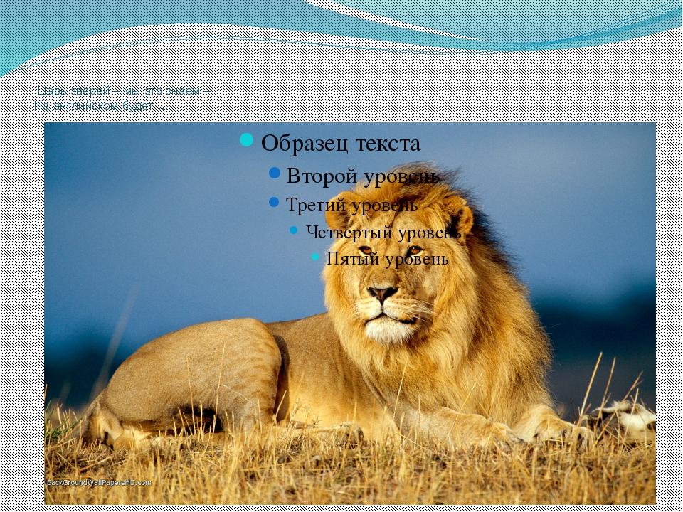 Царь зверей – мы это знаем – На английском будет …