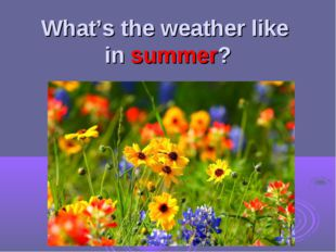 What's the weather like in summer?