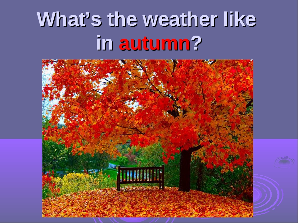 What's the weather like in autumn?