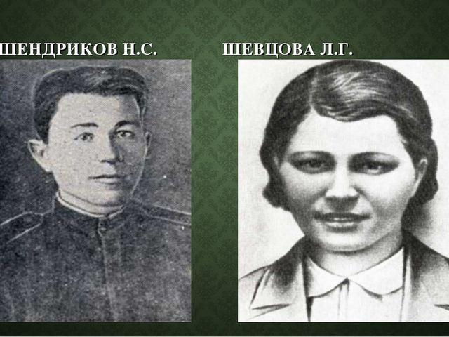 ШЕНДРИКОВ Н.С. ШЕВЦОВА Л.Г.