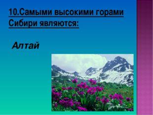 10.Самыми высокими горами Сибири являются: Алтай
