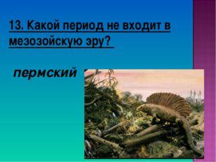 13. Какой период не входит в мезозойскую эру? пермский