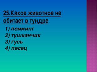 25.Какое животное не обитает в тундре 1) лемминг 2) тушканчик 3) гусь 4) песец