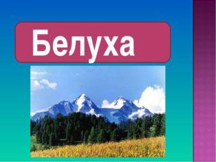 Белуха