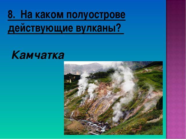 8. На каком полуострове действующие вулканы? Камчатка