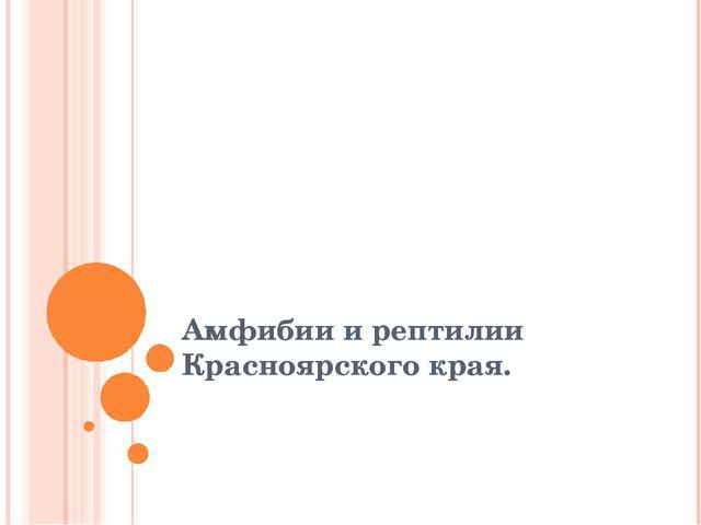 Амфибии и рептилии Красноярского края.