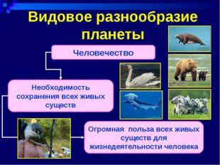 Видовое разнообразие планеты Человечество Необходимость сохранения всех живых