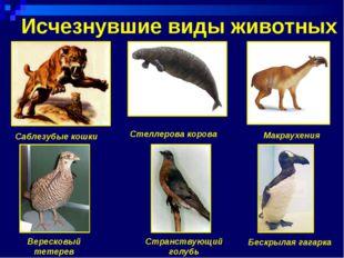 Исчезнувшие виды животных Саблезубые кошки Стеллерова корова Странствующий