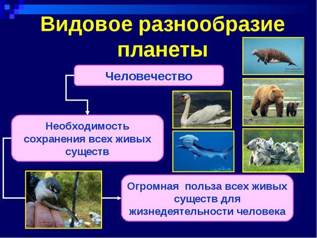 Видовое разнообразие планеты Человечество Необходимость сохранения всех живых...