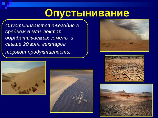 Опустынивание Опустыниваются ежегодно в среднем 6 млн. гектар обрабатываемых...