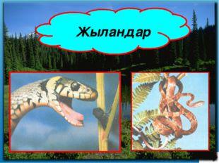 Сабақтың әдісі: Түсіндірмелі көрнекілік Сабақтың түрі: Зерттеушілік тұрғыдағ