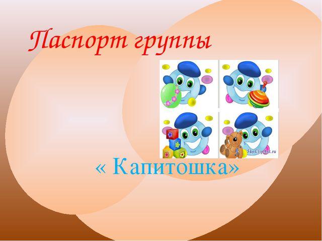 Паспорт группы « Капитошка»