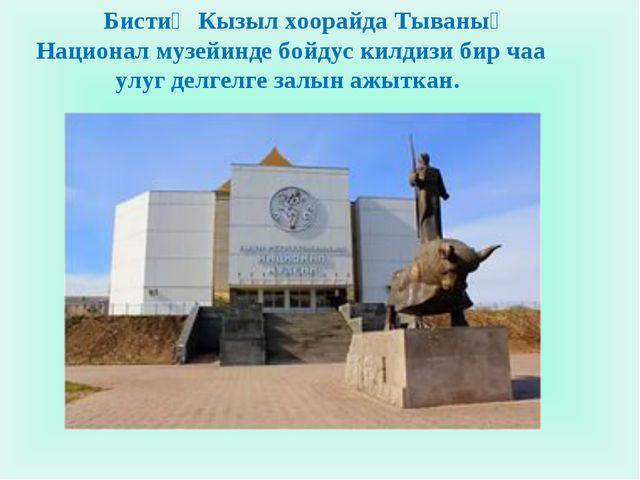 Бистиң Кызыл хоорайда Тываның Национал музейинде бойдус килдизи бир чаа улуг...