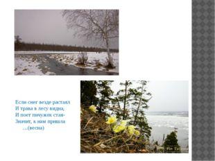 Если снег везде растаял И трава в лесу видна, И поет пичужек стая- Значит, к