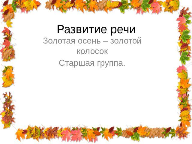 Развитие речи Золотая осень – золотой колосок Старшая группа.