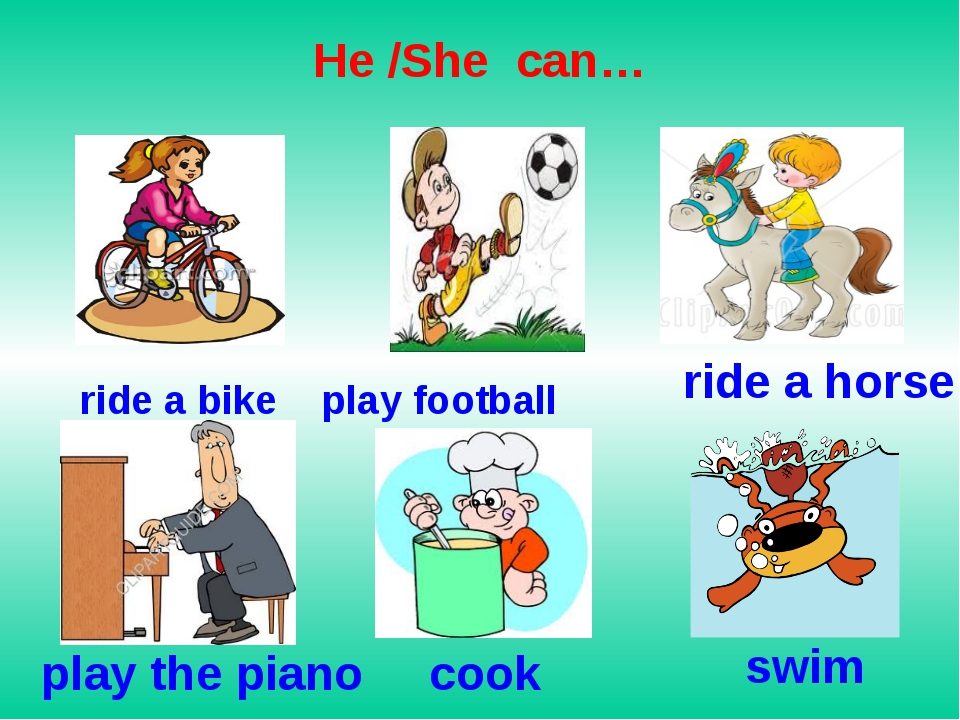 He /She can… ride a bike play football ride a horse play the piano cook swim