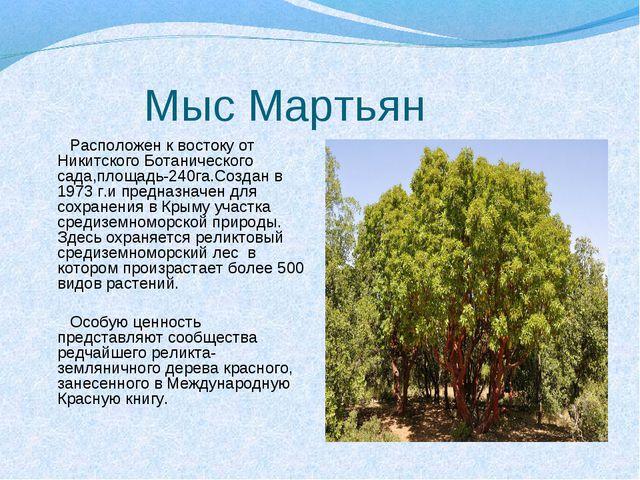 Мыс Мартьян Расположен к востоку от Никитского Ботанического сада,площадь-24...