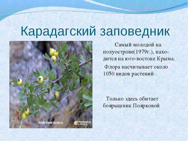 Карадагский заповедник Самый молодой на полуострове(1979г.), нахо-дится на ю...