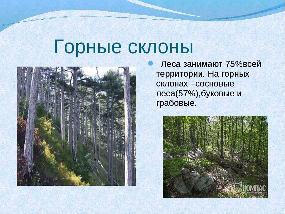 Горные склоны Леса занимают 75%всей территории. На горных склонах –сосновые...