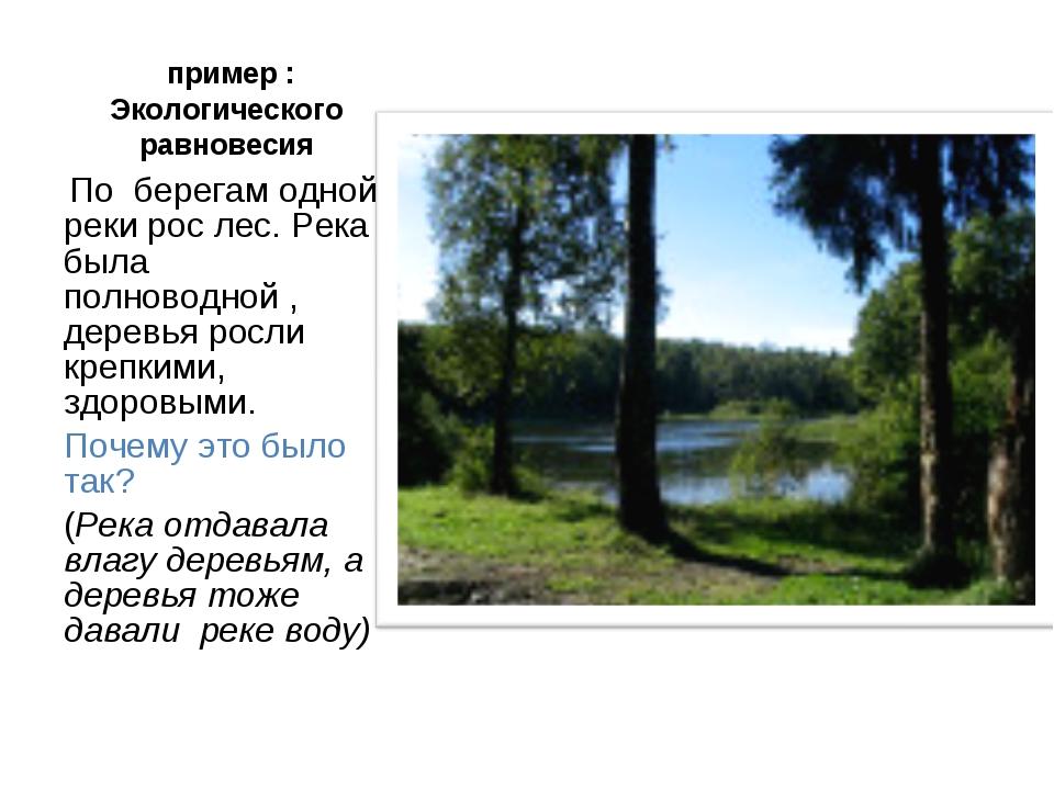 пример : Экологического равновесия По берегам одной реки рос лес. Река была...