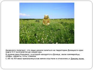 Археологи полагают, что люди начали селиться на территории Донецкого края ещё