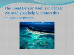The Great Barrier Reef is in danger. We need your help to protect this unique