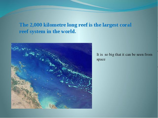 The 2,000 kilometre long reef is the largest coral reef system in the world....