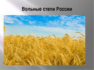 Вольные степи России