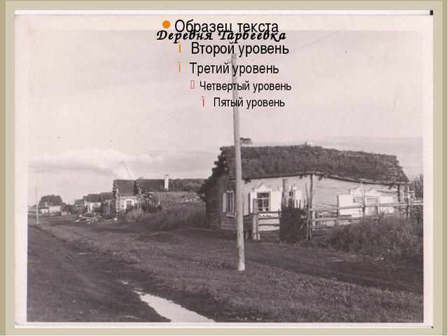 Деревня Тарбеевка