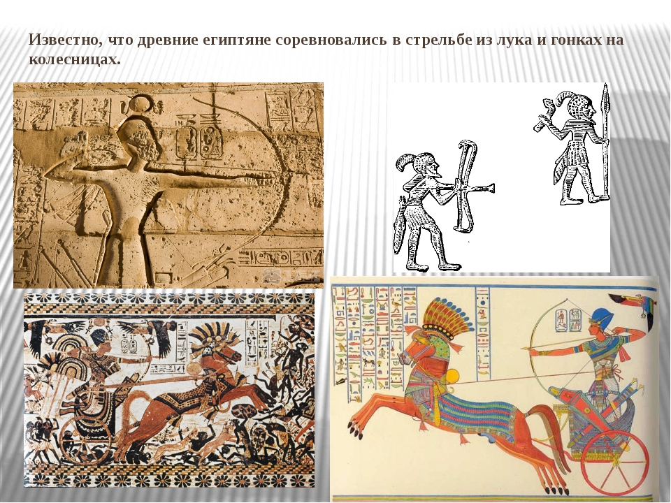 Известно, что древние египтяне соревновались в стрельбе из лука и гонках на к...