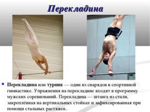 Перекладина Перекладина или турник— один из снарядов в спортивной гимнастике