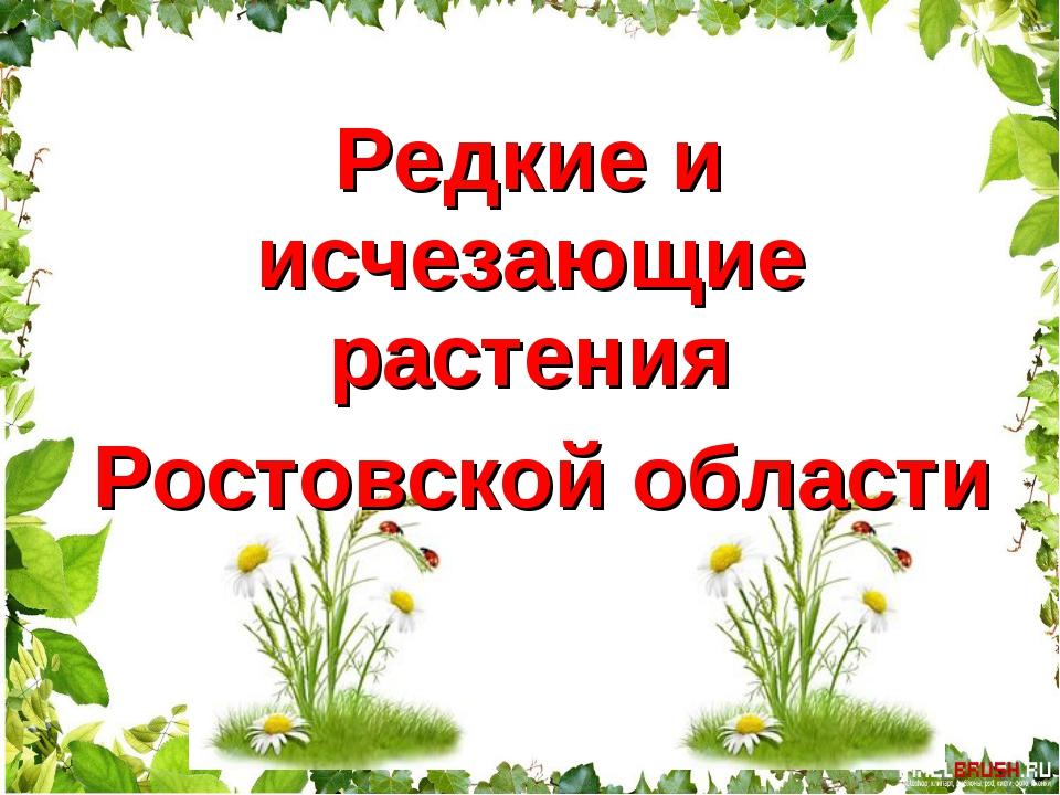 Редкие и исчезающие растения Ростовской области