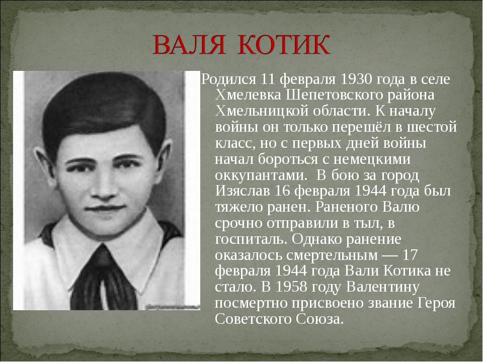 Родился 11 февраля 1930 года в селе Хмелевка Шепетовского района Хмельницкой...