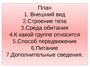 План 1. Внешний вид 2.Строение тела 3.Среда обитания 4.К какой группе относит