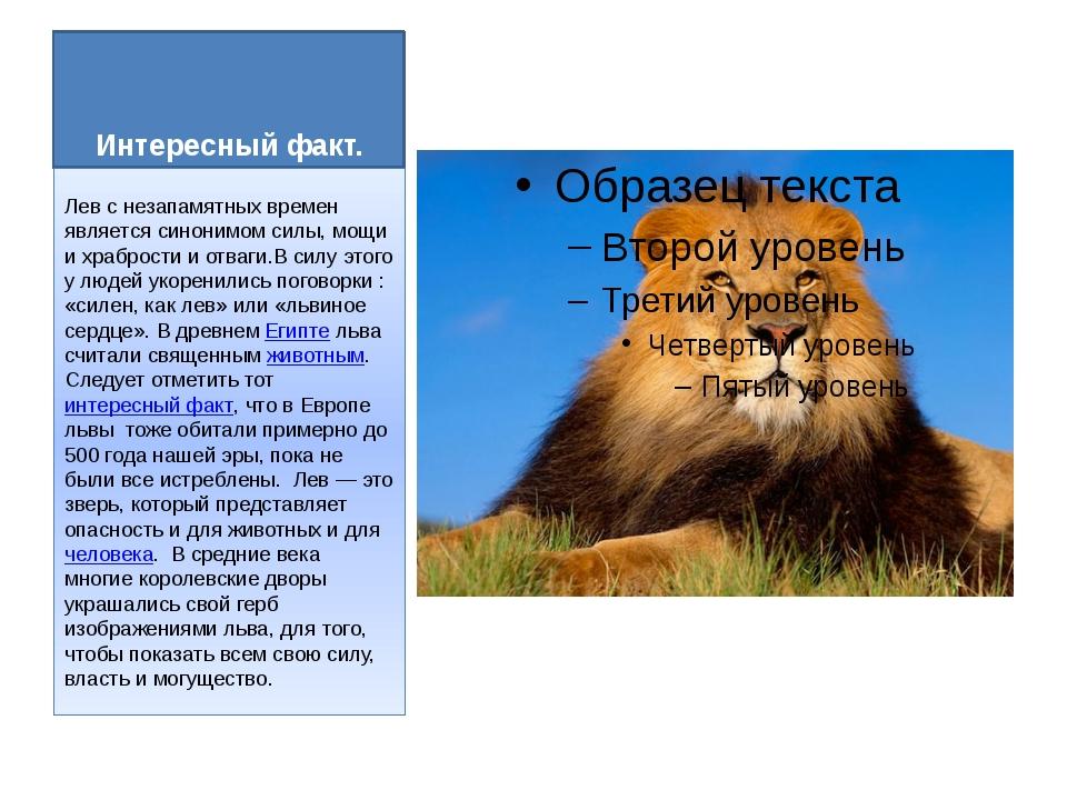 Интересный факт. Лев с незапамятных времен является синонимом силы, мощи и хр...
