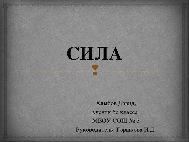 СИЛА Хлыбов Давид, ученик 5а класса МБОУ СОШ № 3 Руководитель: Горшкова И.Д. 