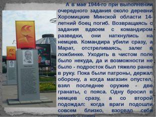 А в мае 1944-го при выполнении очередного задания около деревни Хоромицкие М