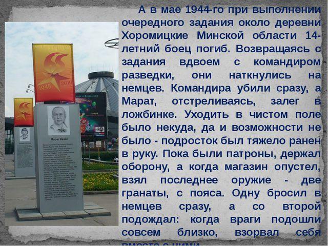 А в мае 1944-го при выполнении очередного задания около деревни Хоромицкие М...