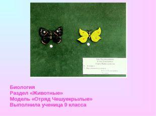 Биология Раздел «Животные» Модель «Отряд Чешуекрылые» Выполнила ученица 9 кла
