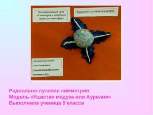 Радиально-лучевая симметрия Модель «Ушастая медуза или Аурелия» Выполнила уче