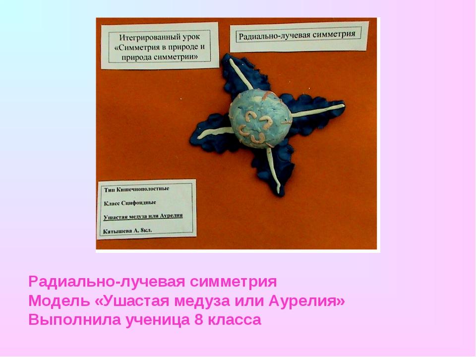 Радиально-лучевая симметрия Модель «Ушастая медуза или Аурелия» Выполнила уче...