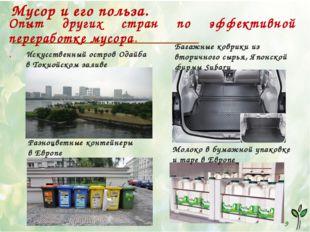 1 9 Мусор и его польза. Опыт других стран по эффективной переработке мусора.